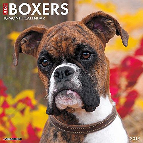 Just Boxers 2017 Wall Calendar (Dog Breed Calendars)