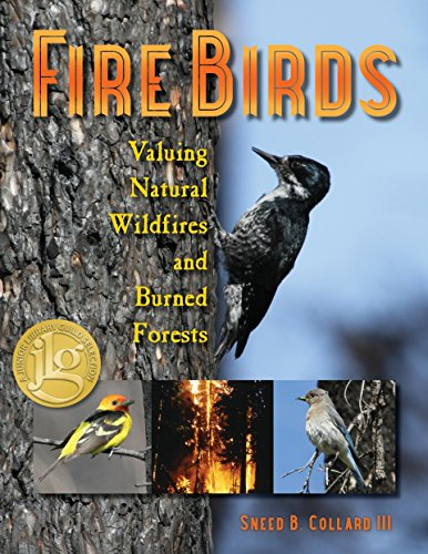 Fire Birds: Valuing Natural Wildfires and Burned Forests PDF Books