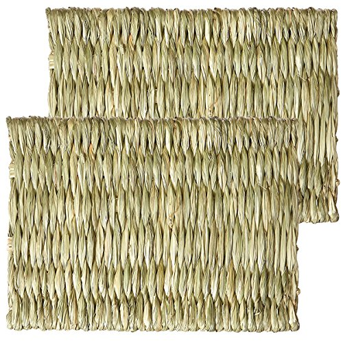 Oxbow Timothy Club - Timothy Mat for Pets, Medium, 2-Pack