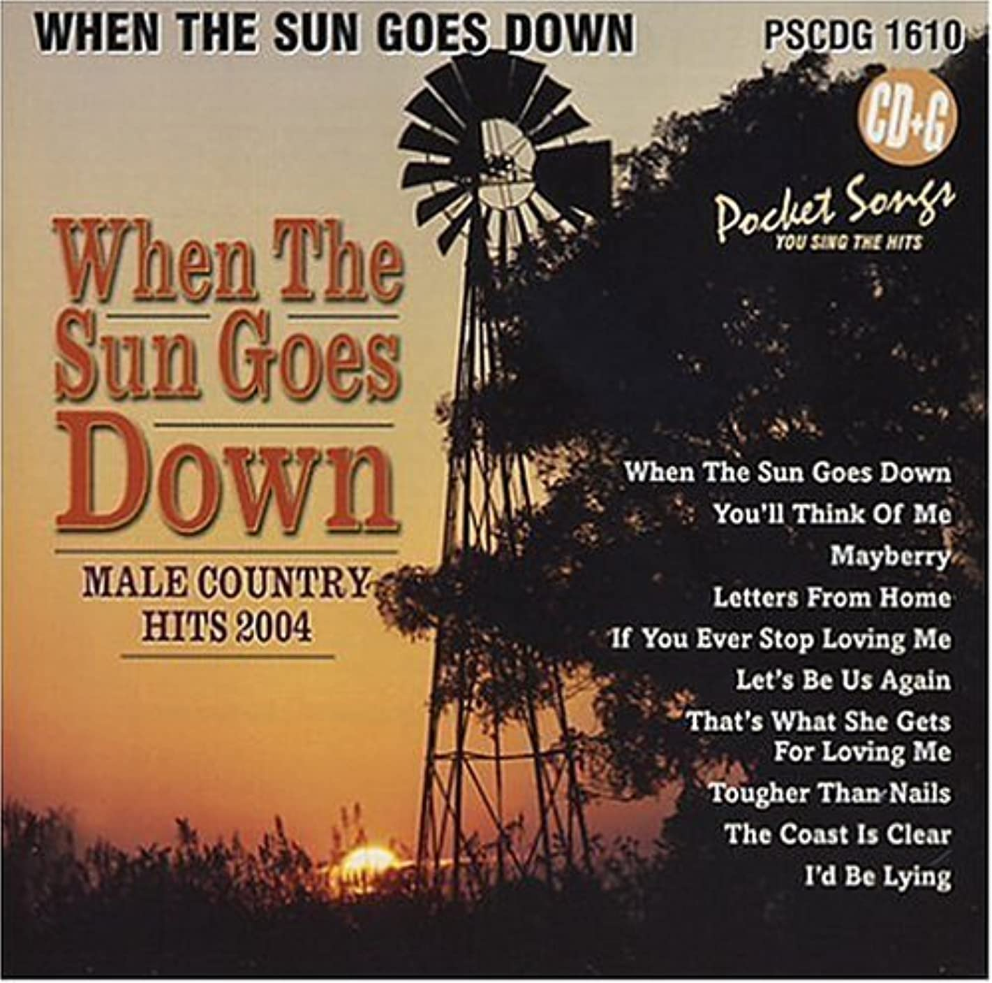 When The Sun Goes Down: Male Country Hits 2004 (Karaoke) (2011-04-12)