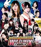 豆腐プロレス The REAL 2017 WIP CLIMAX ...[Blu-ray/ブルーレイ]