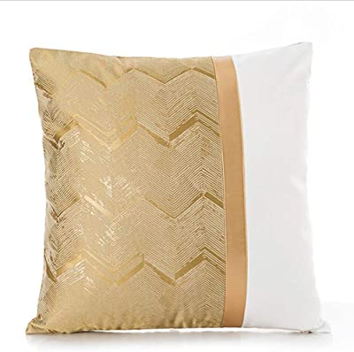Amazon.com: Back Cushion Lumbar Support Pillow Ergonomic ...