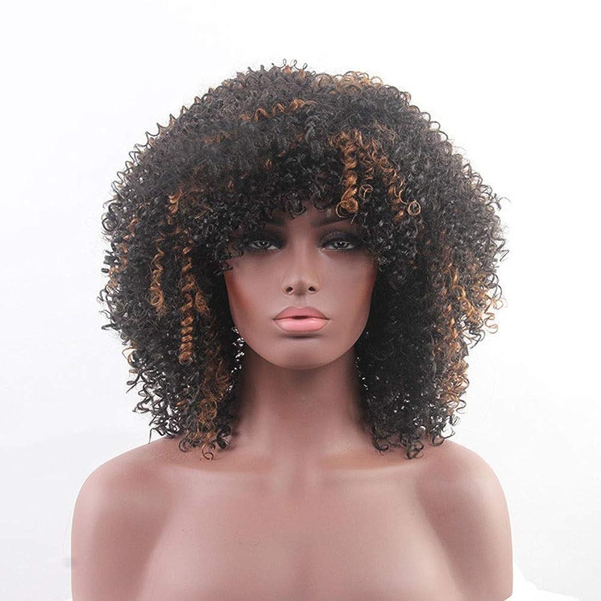 壮大な差上がるYrattary ブラウンブラック混合色アフリカ黒人女性のトウモロコシの小さなロールかつら合成髪レースかつらロールプレイングかつら (色 : Brown mixed black)