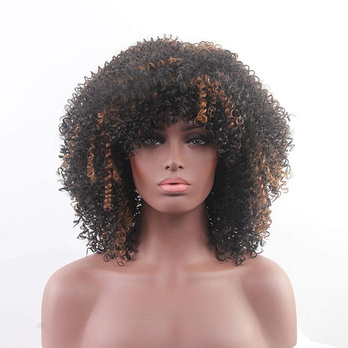 懐疑論無秩序案件Yrattary ブラウンブラック混合色アフリカ黒人女性のトウモロコシの小さなロールかつら合成髪レースかつらロールプレイングかつら (色 : Brown mixed black)