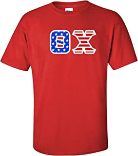 Theta Chi Greek Letter American Flag Tee