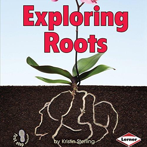 Exploring Roots copertina