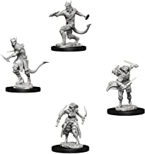 Dungeons & Dragons Nolzur's Marvelous Unpainted Miniatures Bundle: Tiefling Male Rogue & Tiefling Female Rogue