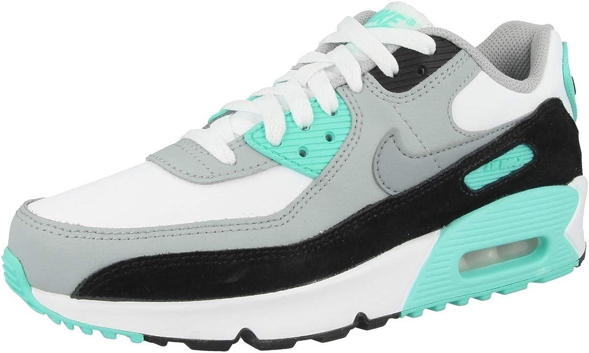 Amazon.com   Nike Air Max 90 LTR   Sneakers