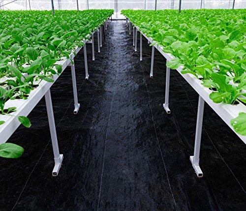 Ecocardener Premium 5oz Pro Garden杂草屏障景观面料耐用和重型杂草砌块园艺垫,易于设置和卓越的杂草控制,环保便捷的设计,3英尺x 50英尺