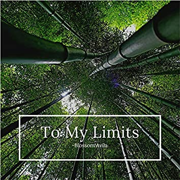 To My Limits