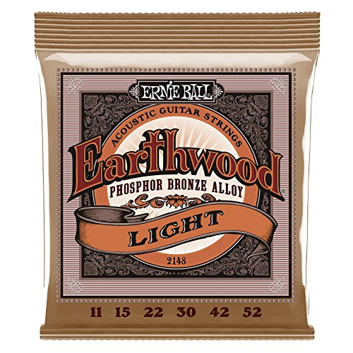 Ernie Ball Earthwood Light