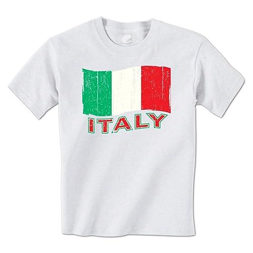 97bb373e Italy Distressed Waving Italian Flag National Italia Pride Country Mens T- Shirt