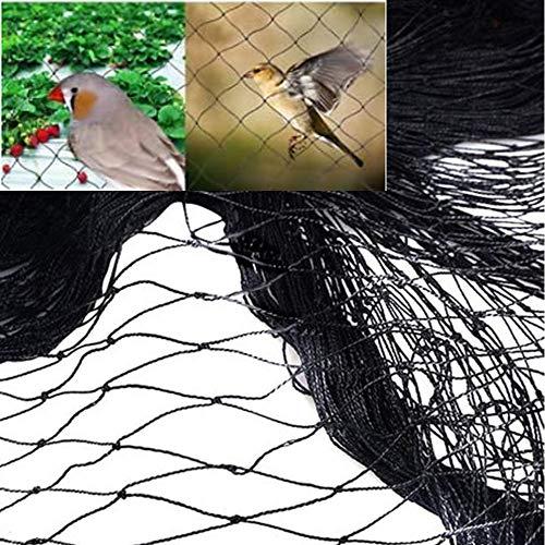 3 Taille Commrcial Grade Anti Netting Oiseaux Mesh Exceptionnelle Qualité Stong Et Souple pour Arbres Fruitiers Vegatable Plantes Cultivées - Inoffensif Prévention Dissuasion,2 * 10m