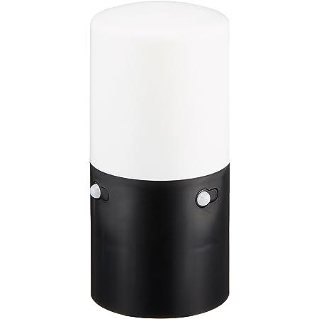 アイリスオーヤマ センサーライト スリム ガーデン 2個セット ブラック LSL-MS2