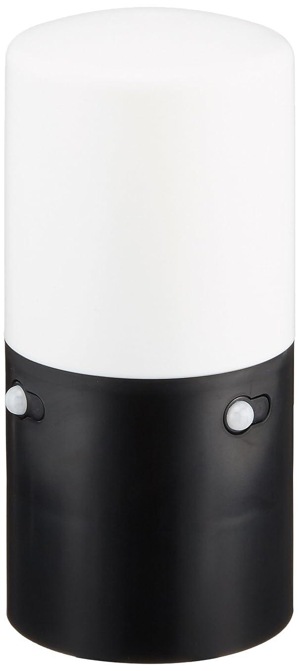 石鹸おなかがすいた羊飼いアイリスオーヤマ センサーライト スリム ガーデン 2個セット ブラック LSL-MS2
