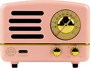 Muzen Portable Wireless High Definition Audio FM Radio & Bluetooth Speaker, Metal Pink, Travel Case Included