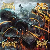 Cannons of Gore Soaked, Blood Drenched, Parasitic Sickness [Explicit]