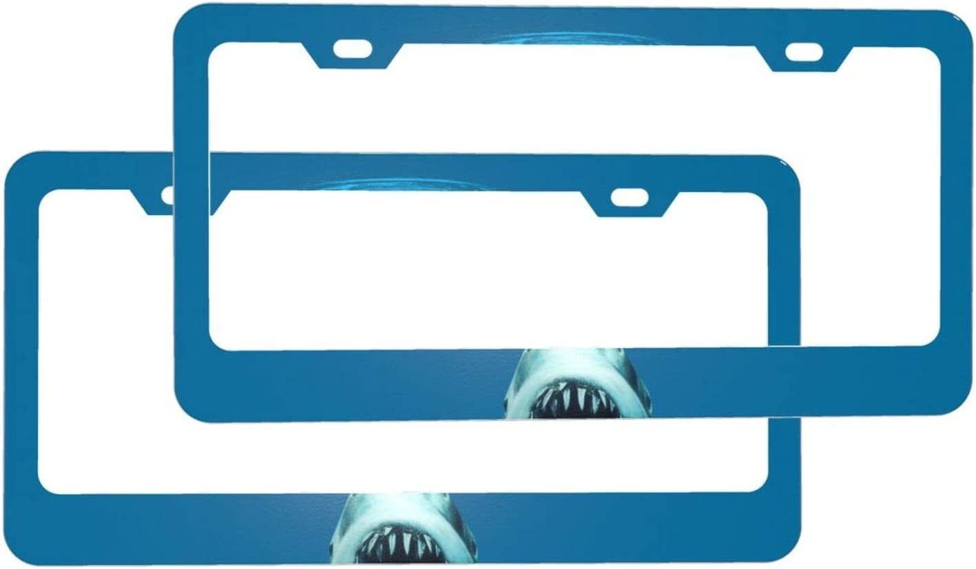 DPQZ Car License Plate Frame 2 Accessories Without Mout Philadelphia Mall Pack Big 2021new shipping free