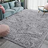 Homore Luxury Fluffy Area Rug for Bedroom Living Room Soft Carpets, Super Cute Comfortable Shag Rugs Modern Carpet for Kids Nursery Girls Home, 4x6 Feet Gray