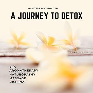 A Journey To Detox (Music For Rejuvenation, Spa, Aromatherapy, Naturopathy, Massage, Healing)