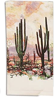 Kay Dee Designs V0030 Desert Sunset Southwest Terry Towel