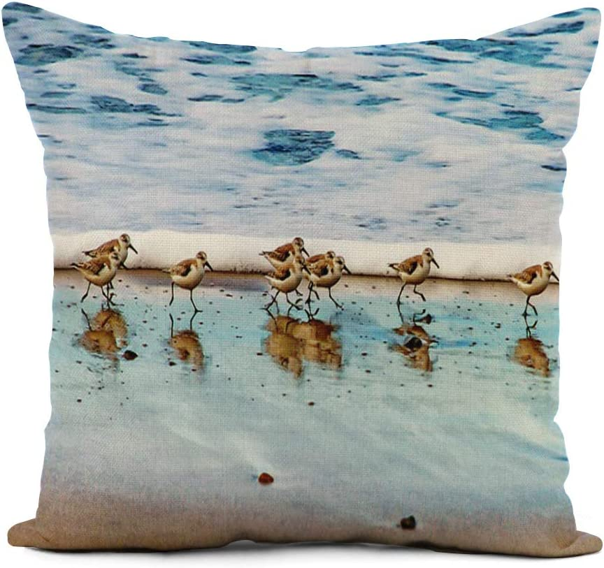 Topyee Throw Pillow Cover 20x20 Inch Shorebird Sandpipers Running Along Beach Sand Piper Nautical Ocean Home Decor Pillowcases Square Pillow Cases Cushion Covers for Sofa Couch Bed