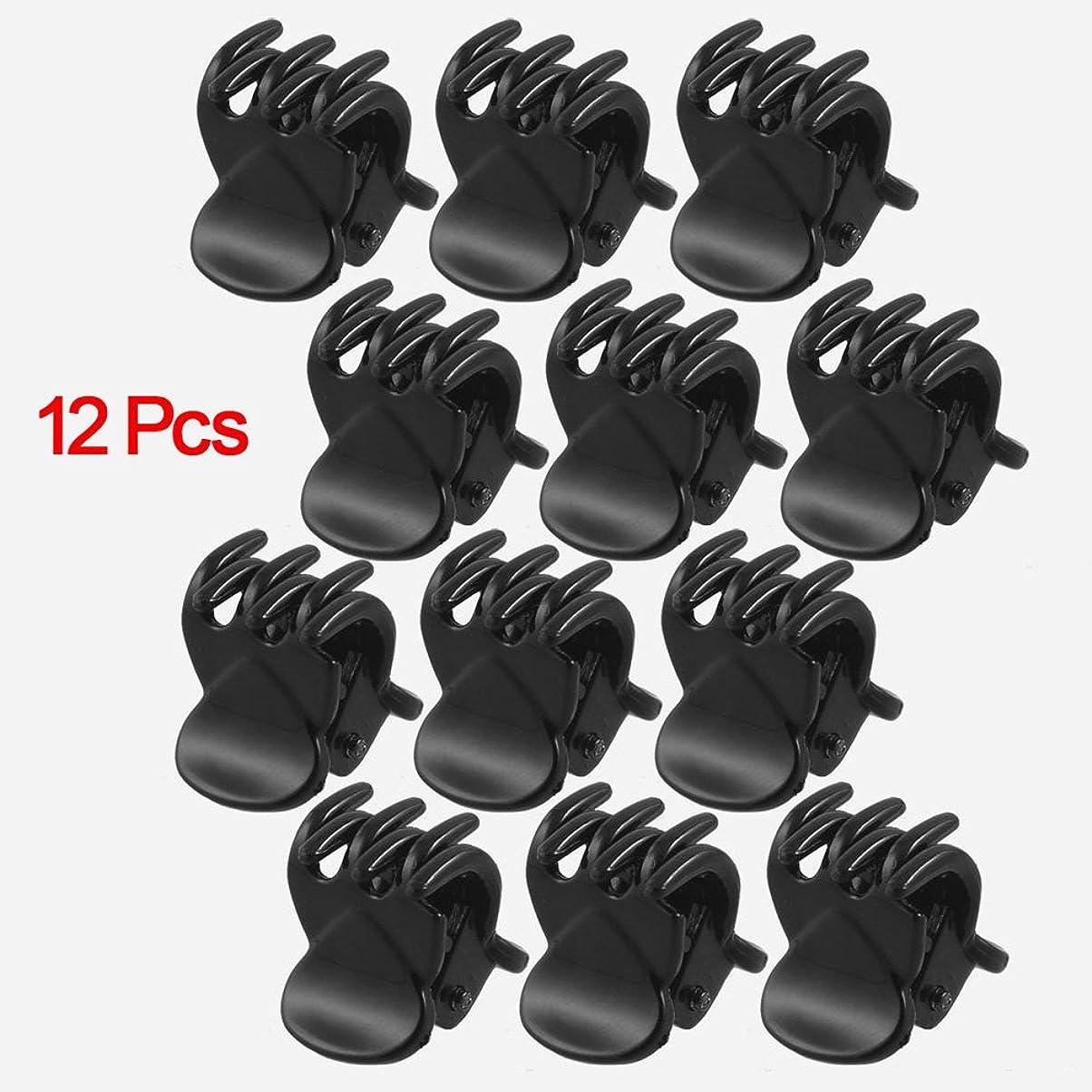 六分儀アマチュア大使SODIAL(R) 女性のための12個の黒いプラスチック製ミニヘアピン6爪ヘアクリップクランプ