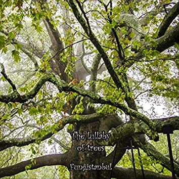 The Lullaby of Trees (feat. Duygu Demir)