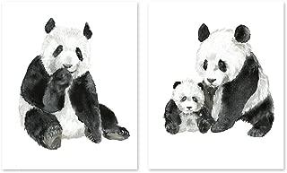 panda bear painting