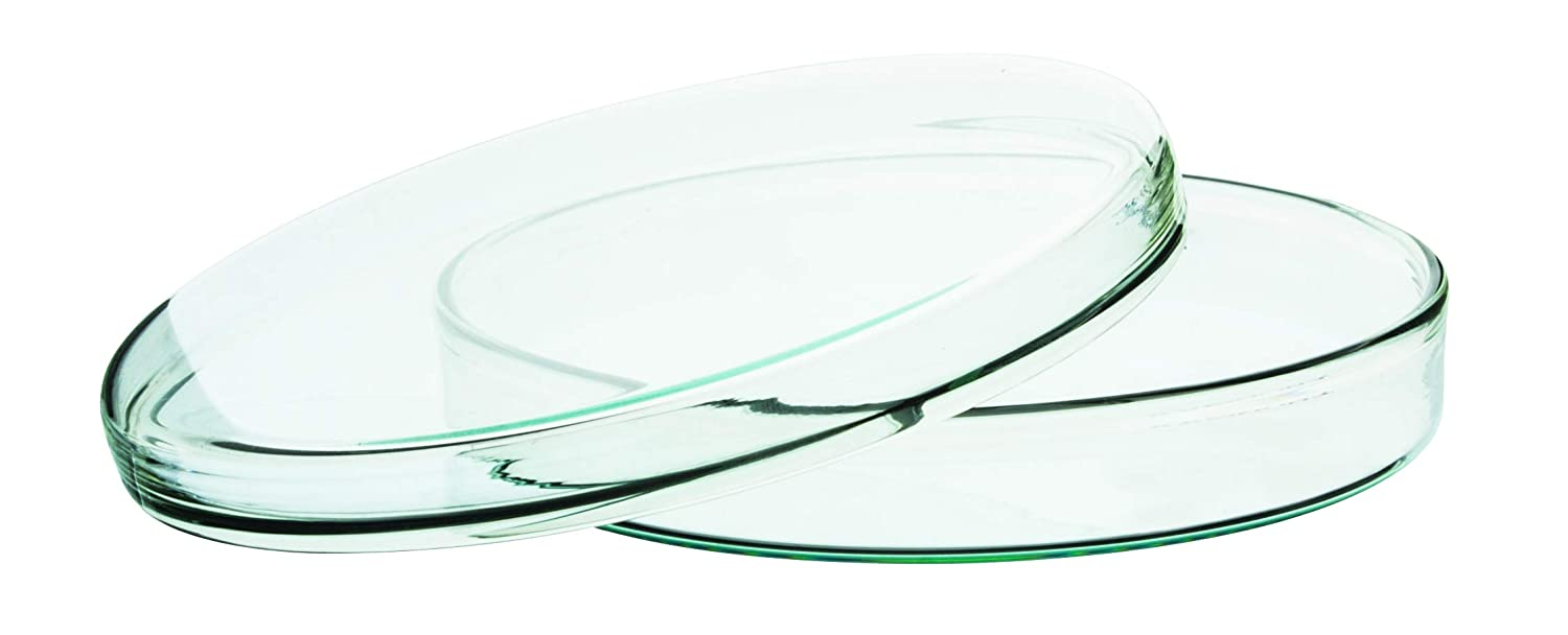 Eisco Labs Premium Petri Dish Heavy Don't miss the campaign Glass 100mm D Raleigh Mall Borosilicate