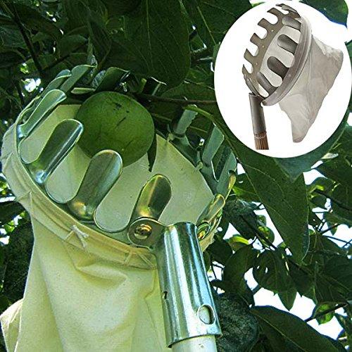 Bluelover Pratique Orchard Fruit Picker Jardinage Fruits Cueillette Outil