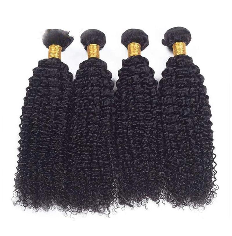 叫ぶ難しい早熟巻き毛のかつらブラジルの倒錯した巻き毛の髪のバンドルかつら人間の自然な色 (100 +/-5g)/pc (8-24 インチ)
