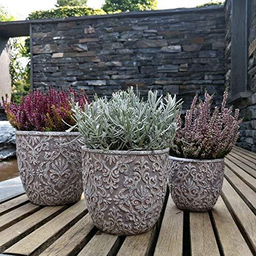 3x Plantas Maceta de cemento Trio Jardinera para suculentas Macetas grandes de piedra 14x14cm, 18x18cm y 21x21cm