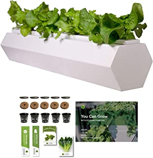Go Grow Hydroponic Gardening Planter - Indoor/Outdoor Gardening for Non-GMO Herbs, Flowers, and Leafy Greens w/Grow Kit Hydroponic System (Hex - 5.5 Gallons, Cool White)