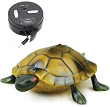 Best remote control turtle Reviews