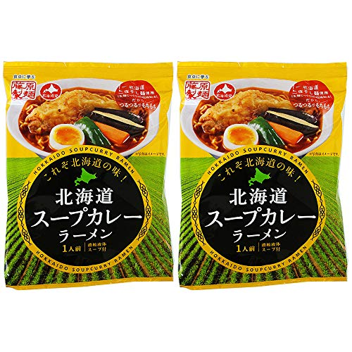 スープカレー 北海道 スープカレーラーメン 乾麺 2食入 藤原製麺 インスタントラーメン 送料 無料