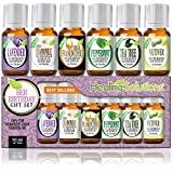 Healing Solutions Birthday Gift for Her Set 100% Pure, Best Therapeutic Grade Essential Oil Kit - 6/10mL (Frankincense, French Lavender, Peppermint, Roman Chamomile, Tea Tree, and Vetiver)