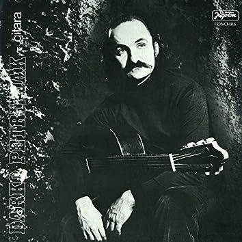 Darko Petrinjak, Gitara