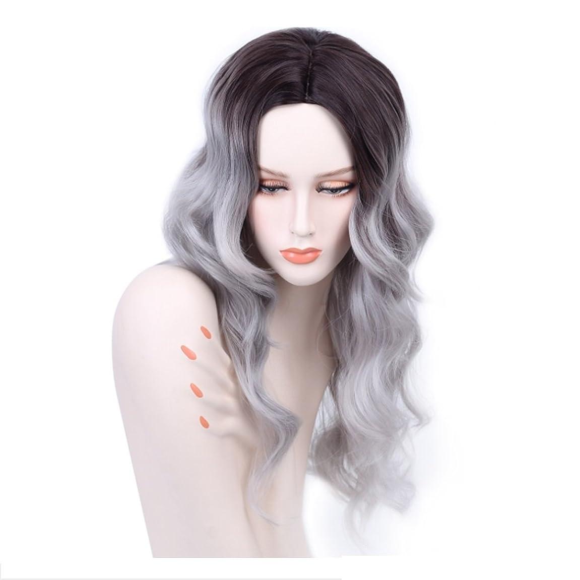 レース交通渋滞ビームKoloeplf 女性のための光沢のある現実的なかつらロングバンズの長いカーリーヘアウィッグ耐熱性のふわふわ毛髪かつら21インチ (Color : Black gradient gray)