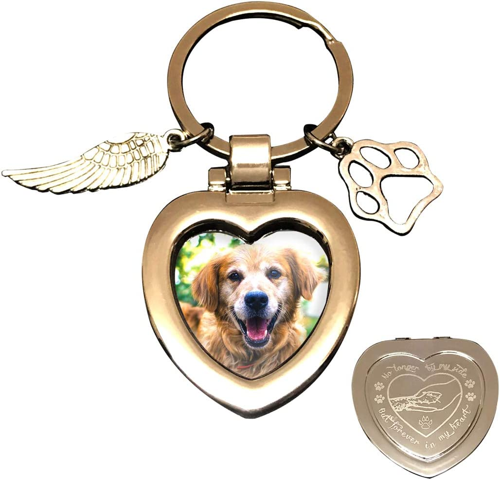 JOEZITON Dog Cat Pet Memorial Opts Gifts Now on sale 2021 new Loss Passe