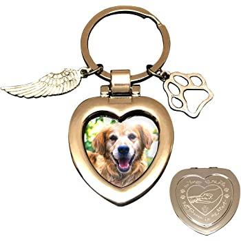 JOEZITON Pet Memorial Gifts (Opts) Passed Away Personalized Family Picture Frame or Keychain Jewelry Angel with Paws for Loss of Dogs or Cats.