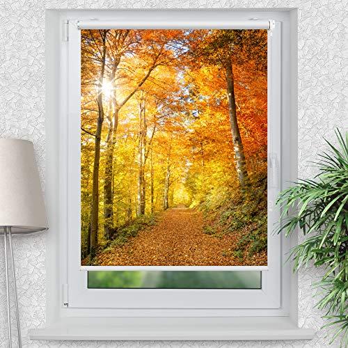 La-Melle » Rollo Motiv Herbstwald | Verschiedene Größen | Klemmrollo ohne Bohren | auch für Wand- oder Deckenbefestigung, Größe: B 120 x H 150 cm