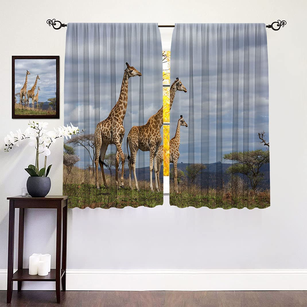 Africa Blackout Max Max 89% OFF 47% OFF Curtains African Giraffe S at The Family Looking