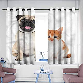 Mdxizc Durable Curtain Pug Kitten and Puppy Photo Printing Insulation W72 xL63 Suitable for Bedroom,Living,Room,Study, etc.