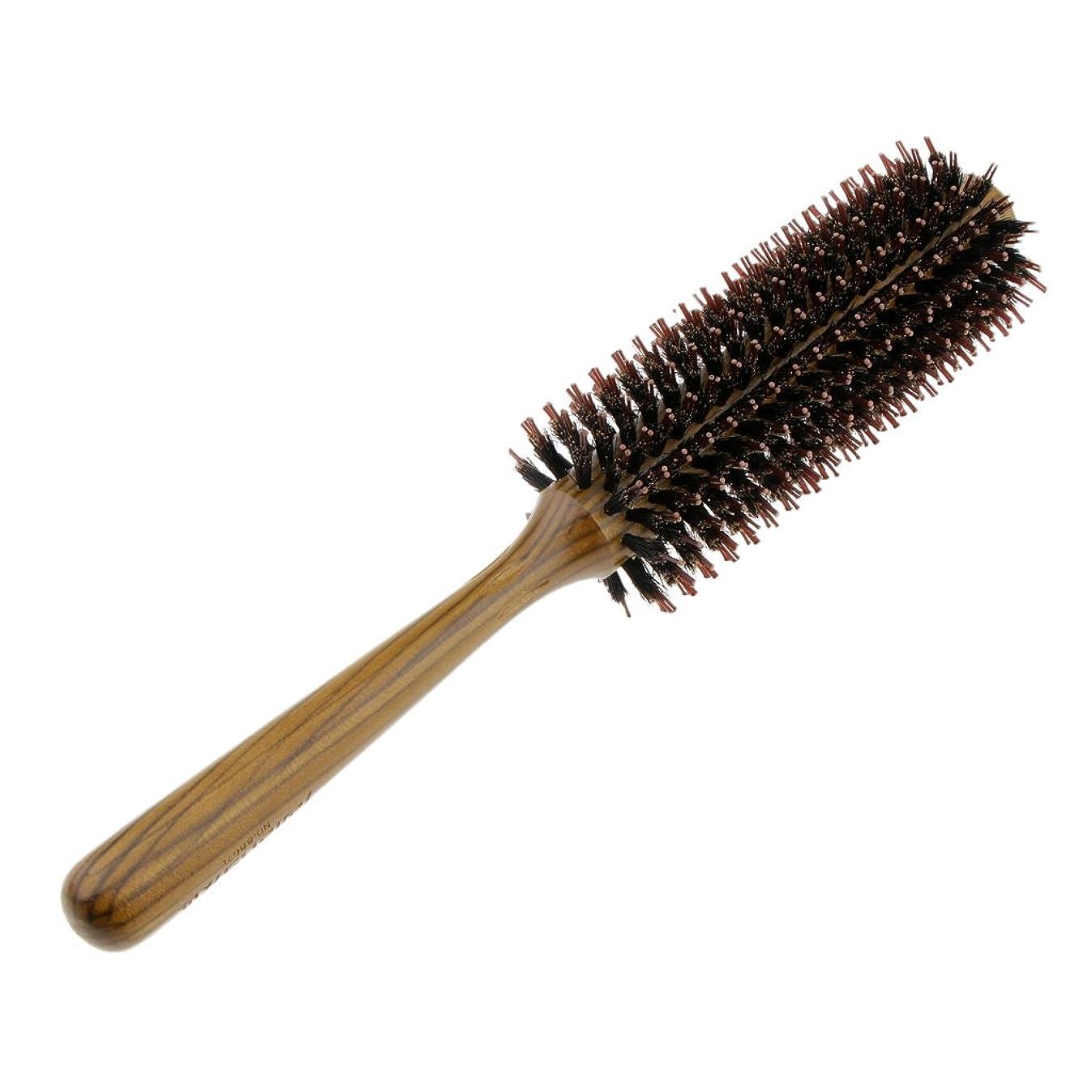 鎖ジョガーノミネートFenteer ロールブラシ ヘアブラシ コーム ヘアスタイリング 櫛 くし カール 巻き髪 3サイズ選べる - L