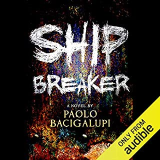 Ship Breaker Titelbild