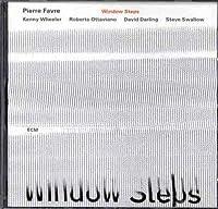 Window Steps by PIERRE FAVRE (2008-11-18)