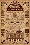 Harry Potter Laminiert Quidditch at Hogwarts Maxi Poster 61