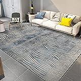 U/S AKHDT Ligne abstraite Gris glacé Tapis de salon moderne minimaliste pour chambre à coucher Canapé lit de maison CX-15 _ 1,2 m x 1,6 m