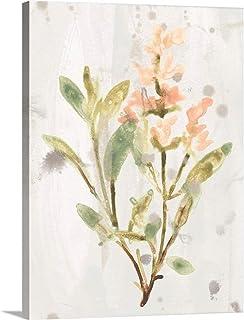 Antique Earthtone Herbs IV Canvas Wall Art Print, 36